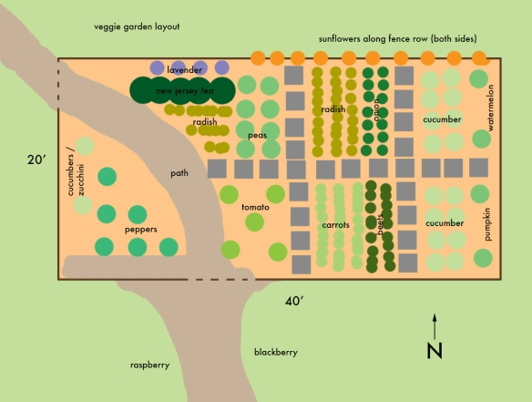 Layout of our veggie garden this year.