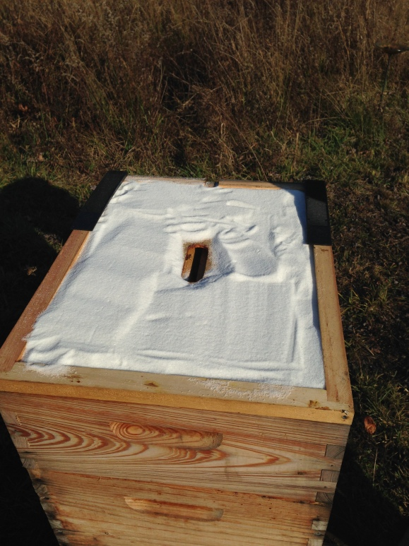 Sugar on top of the inner cover to absorb winter moisture in the have. It should crystalize and provide an emergency reserve for the bees. The black strips are composite shims that will give a little angle to the outer cover, encouraging water to run off the top of the hive.