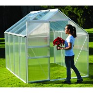 A small $300 greenhouse from Harbor Frieght.