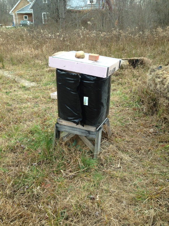 Hive No. 1 all bundled up for winter.